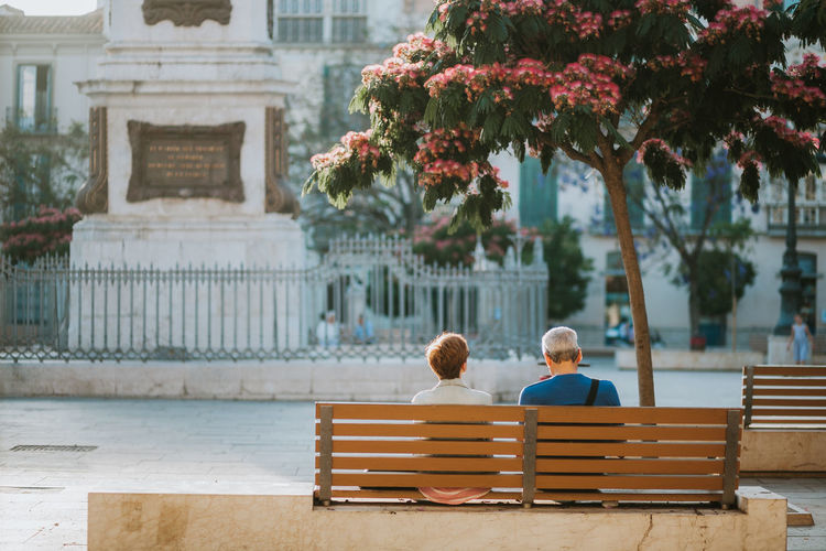 Rear view of man and woman sitting on bench by tree