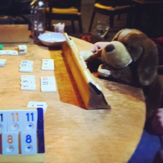 Kicking some Butt Playing Rummy . Puppy cards gambling cute daww cafe dog lol love picoftheday