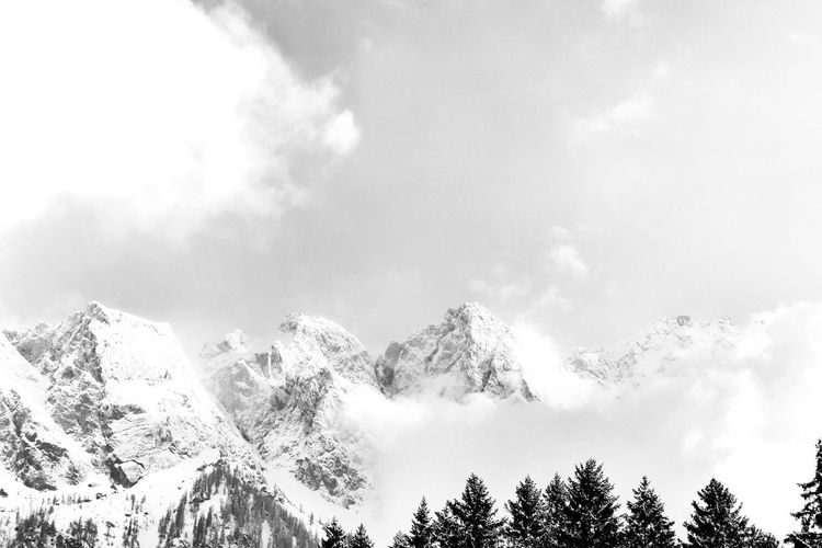 Zugspitze Backgrounds Alps Mountains And Sky Enjoying The View Bavaria Bayern Zugspitze Betterlandscapes Mountain View Blackandwhite Tree Mountain Cold Temperature Winter Forest Snow Sky Cloud - Sky Landscape Tranquil Scene Tranquility Fog Scenics Mountain Range Non-urban Scene Mist Calm Countryside Idyllic Foggy