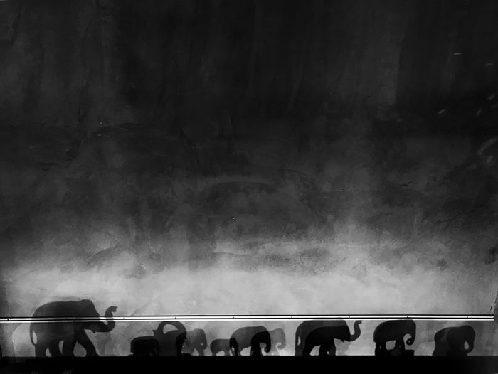 A little history of the big animal on that wall... Concept Silhouette Wall Art Wall Blackandwhite Elephants Animal Shadow Togetherness Lifestyles