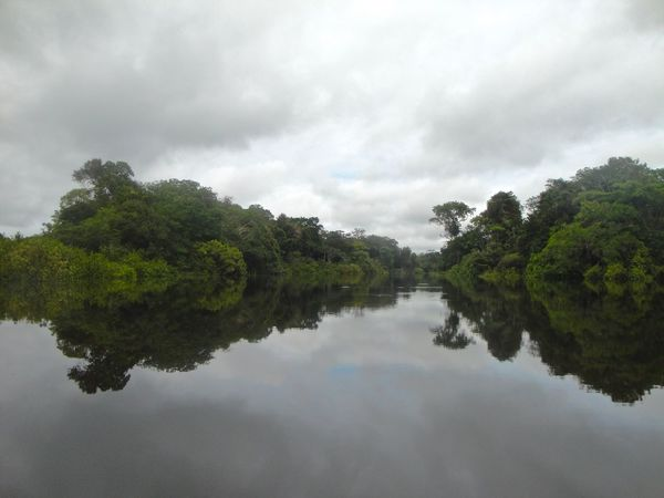Amazon Amazonas Beauty In Nature Boat Trip Brazil Colombia Green Idyllic Jungle Landscape Nature Outdoors Overcast Peaceful Rainforest Reflection Reflection River Scenics Sky Tranquil Scene Water Water Reflections