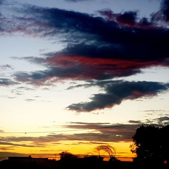 Sunset Beauty In Nature Outdoors No People Silhouette Cloud - Sky Sky Tree Tranquility Nature Scenics Star - Space Astronomy Day Galaxy Personal Perspective