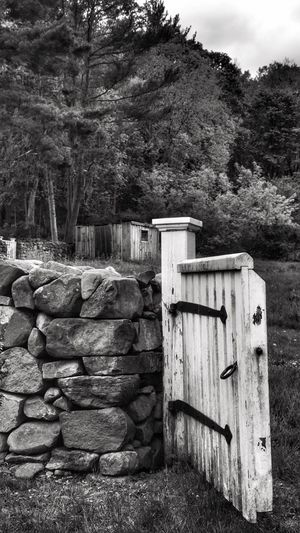 Wooden Gate Fence Landscape Black And White Stone Wall Outdoors Nature Rural