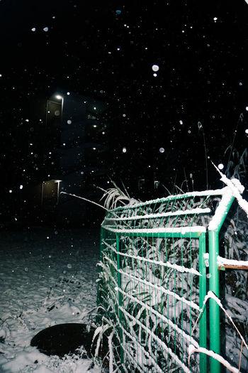 night with snow