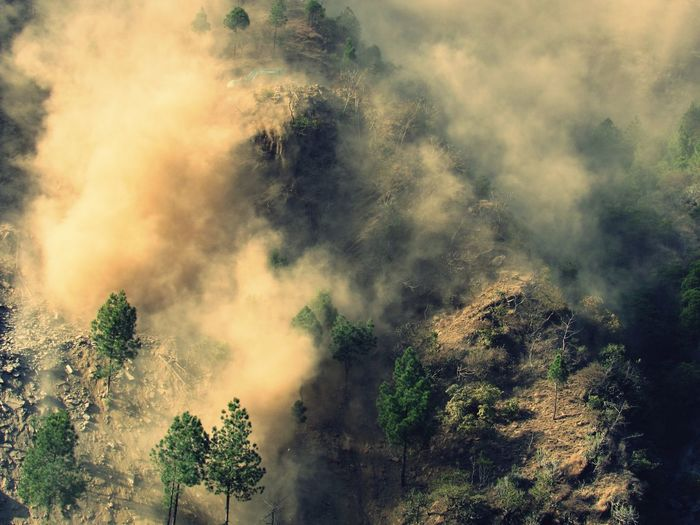 destroying nature is a sin. EyeEm Gallery Forest Photography Dust Canonphotography Destroying The Planet Destroying Nature Tree Forest Fire Forest Multi Colored Mountain Sky Landscape EyeEmNewHere