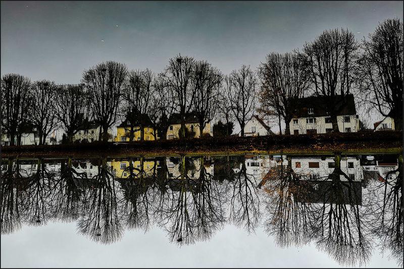 November Tristesse Schwanenteich Smartphonephotography EyeEm Deutschland Streamzoofamily Streetphotography EyeEm Selects For You ;-) Water Tree Symmetry Silhouette Reflection Sky