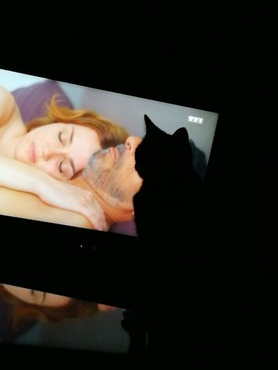 My Cat♥ Look Tv