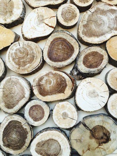 Full frame shot of tree stumps
