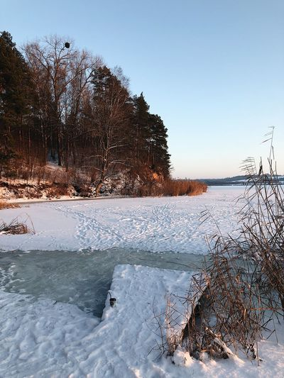 Sky Water Nature Plant Tranquility Tree Beauty In Nature No People Scenics - Nature Cold Temperature Winter Day Tranquil Scene Clear Sky Frozen Snow Non-urban Scene Lake Land Outdoors