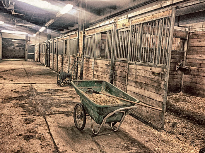 Abandoned Day Horse Life No People Old-fashioned Outdoors Stable Stable Life Stable, Shelter, Building, Home, Walls,