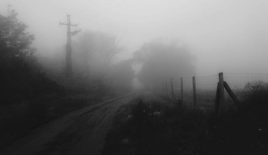 silence of fog Fog Landscape Outdoors No People Nature Spooky Cold Temperature Blackandwhitephotography Trip Blackandwhite October Autumn Morning October Mist Adventure Dreamlike Atmosphere Dreamlikescenery Foggy Morning Blackandwhite Photography Silence Of Nature Silence Moment Silence Morning Alone With Thoughts Alone In Nature, Yelt Needing To Share The Experience Alone Time Alone