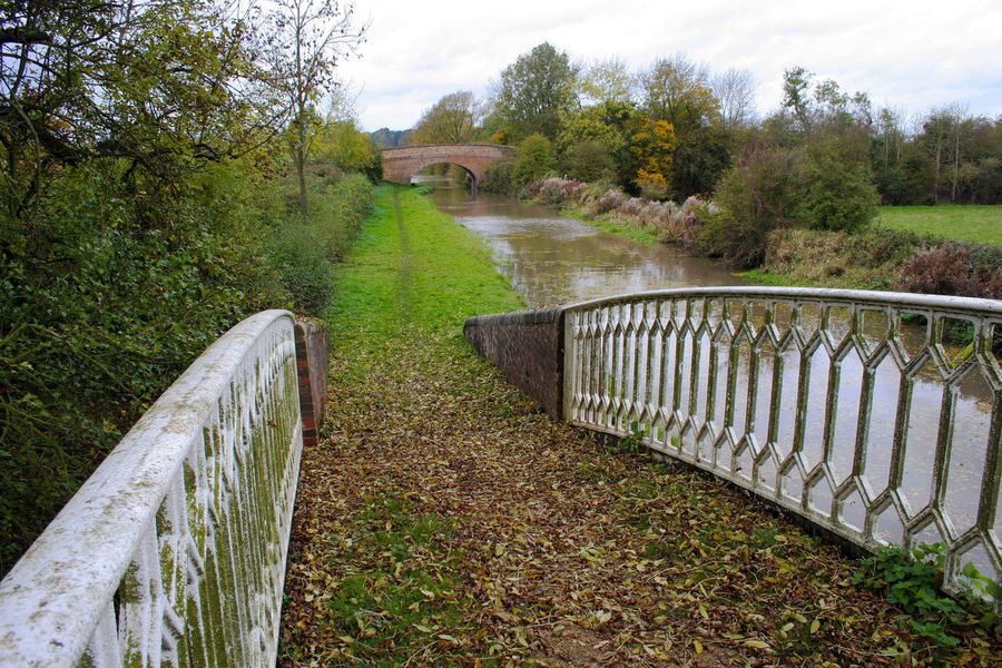 Rural canal tow path on an overcast Autumn day in Warwickshire United Kingdom Autumn Beauty In Nature Bridge - Man Made Structure Built Structure Canal Day Footbridge Grass Nature No People Outdoors Railing Rural Scene Sky Towpath Tranquil Scene Tranquility Trees Water