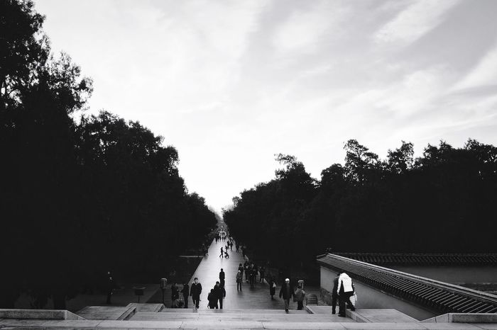 Leisure Activity People Cloud - Sky Sky Large Group Of People Tree Outdoors Real People Adult Day Hockey Adults Only Ice Hockey Only Men Ice Rink Temple Of Heaven Park Beijing, China FUJIFILM X-T10 Light And Shadow Ancient Travel