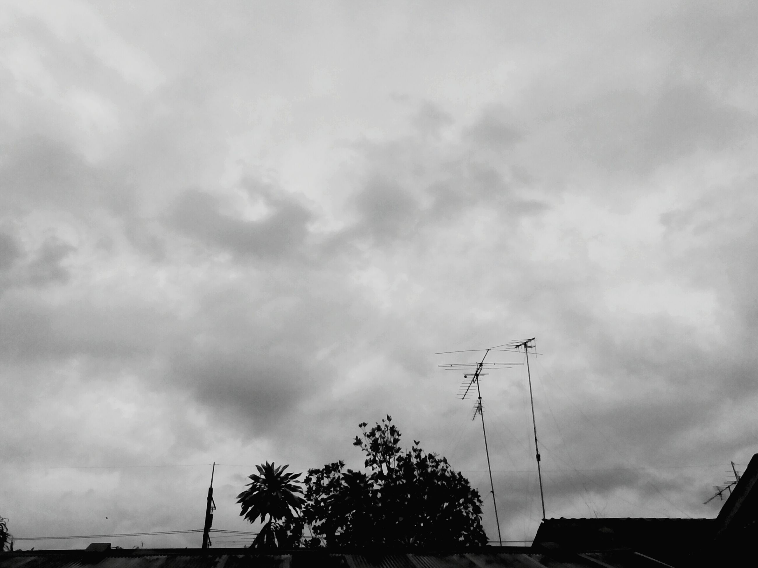 sky, cloud - sky, cloudy, tree, low angle view, transportation, street light, silhouette, car, cloud, road, overcast, weather, nature, land vehicle, mode of transport, street, outdoors, electricity pylon, built structure