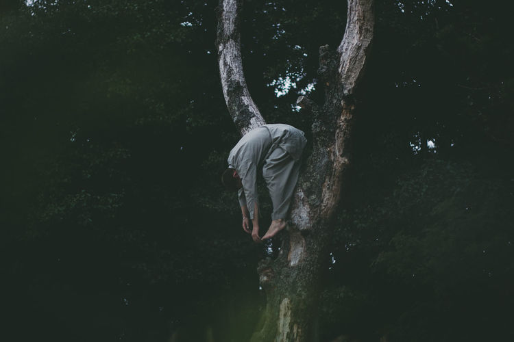 Side View Of Man Hanging On Bare Tree In Forest