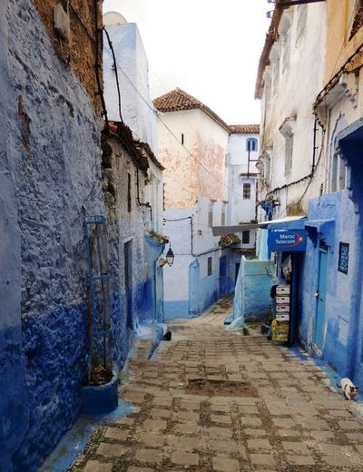 Travel Photography Street Photography Chefchaouen My Travel  Morocco Blue City Chefchaouen Rif Mountains Morocco Blues Chefchaouen Medina A Lovely Place