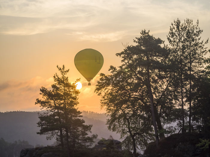 Air Vehicle Balloon Bastei Beauty In Nature Cloud - Sky Fog Forest Hot Air Balloon Mountains Nationalpark Nature No People Non-urban Scene Orange Color Outdoors Saxon Switzerland Scenics - Nature Silhouette Sky Sun Sunset Sächsische Schweiz Tranquil Scene Transportation Tree