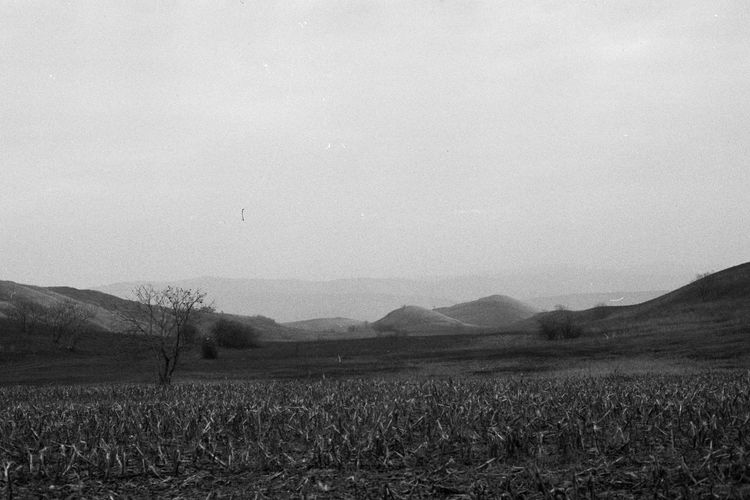 35mm Film Analogue Photography Blackandwhite Countryside Grass Hill Landscape Mountain Nature Non-urban Scene Outdoors Sky