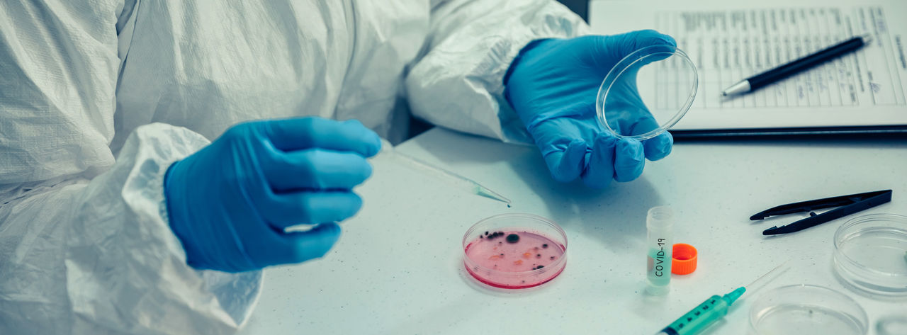 Midsection of scientist with petri dish on table in laboratory