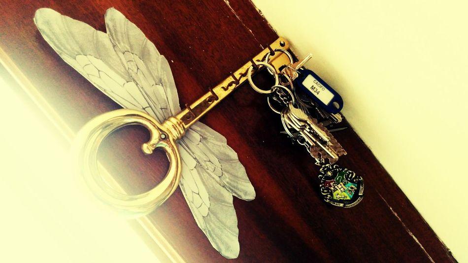 Flyingkeys Wings Harry Potter Hogwarts School Of Witchcraft And Wizardry DIY Alohomora Keys Idea Decoration