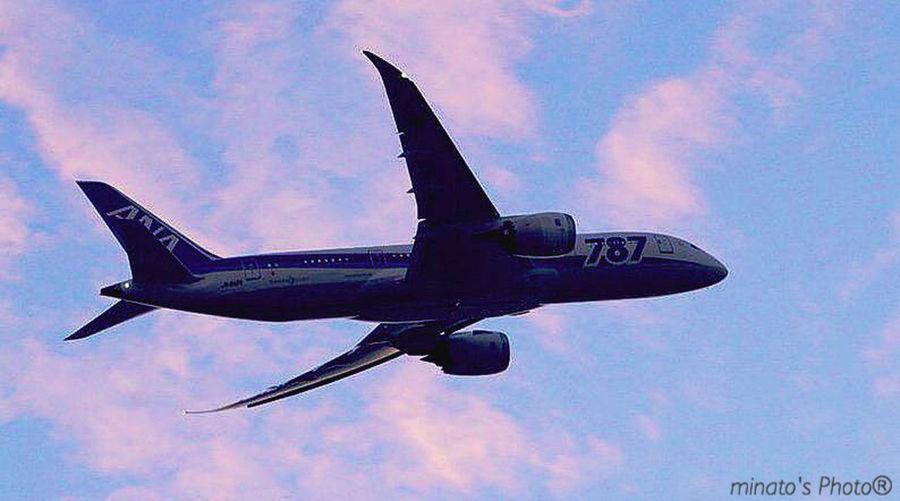 何年かぶりに羽田空港来て近くの撮影ポイントに移動し、飛行機撮り😁 空 飛行機 城南島海浜公園 ボーイング787