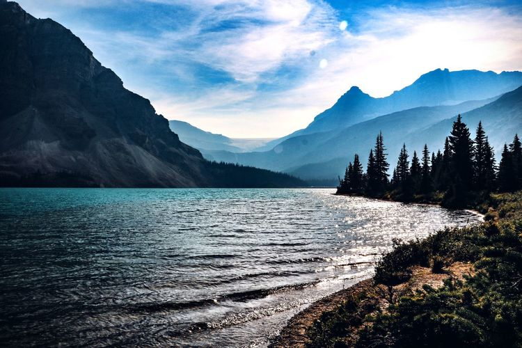 Bow Lake Canada Banff National Park  Water Mountain Beauty In Nature Scenics - Nature Tranquility Tranquil Scene Mountain Range Nature Lake No People Idyllic Land Outdoors Nature Photography