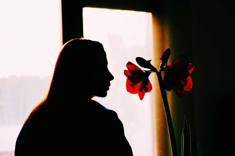Silhouette woman standing by flower against window at home