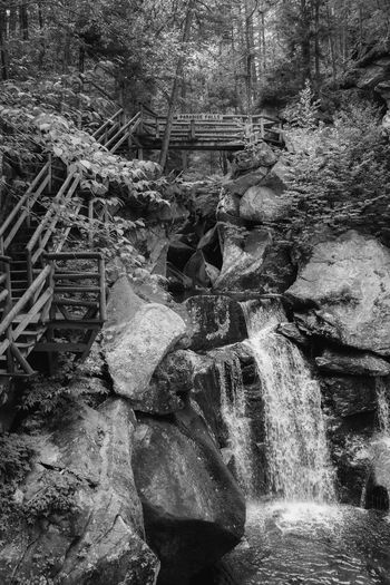 Tree Solid Rock Forest Water No People Rock - Object Day Plant Nature Architecture Motion Built Structure Flowing Water Outdoors Waterfall Old Land Flowing Ruined Monochrome Blackandwhite Nature Hiking