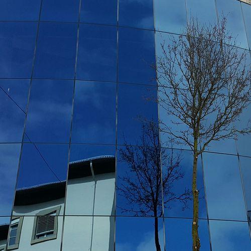 Reflection City City Life Blue Sky Blue Sky Architecture Office Building Building Urban Scene City Location