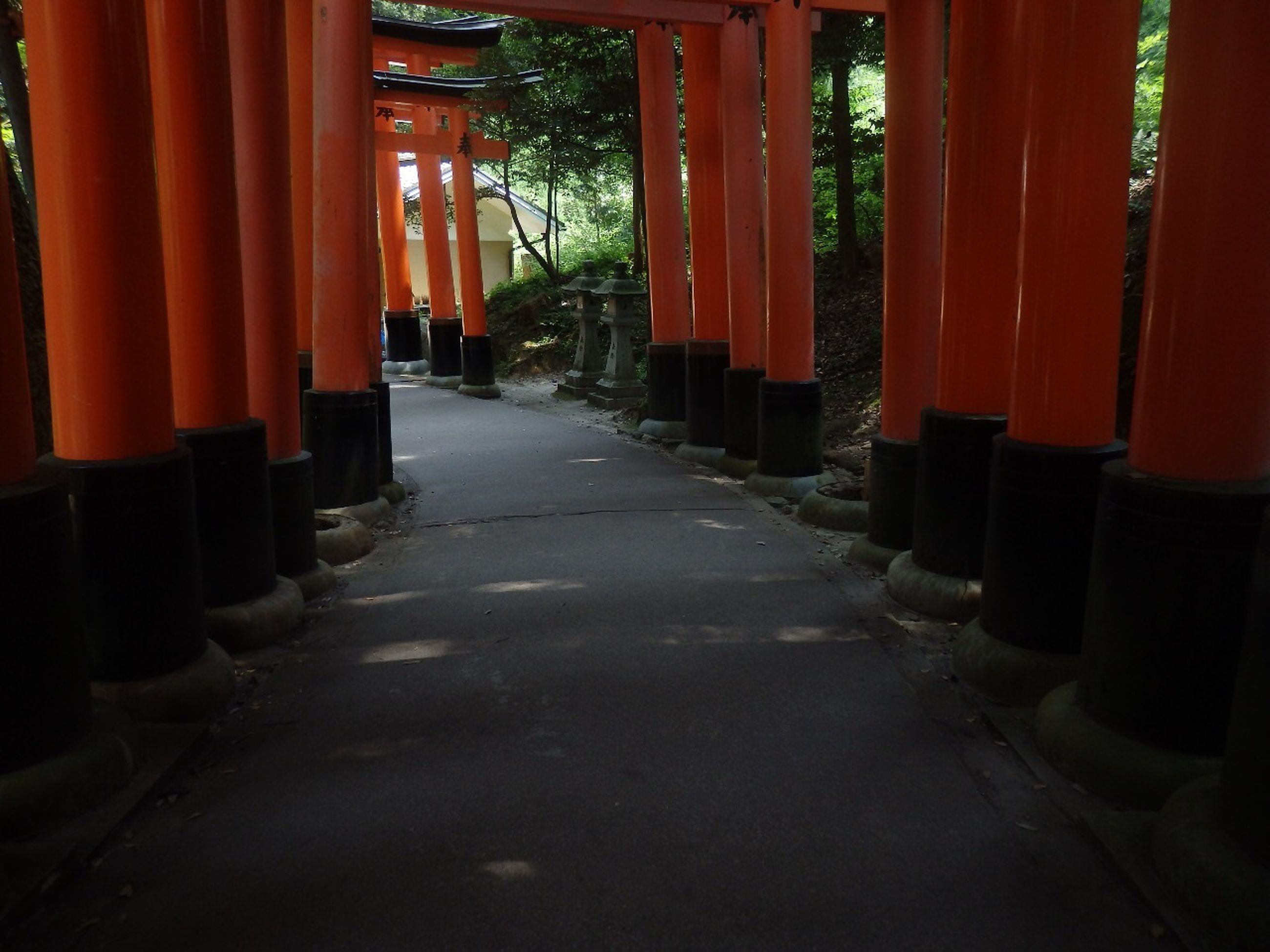 architecture, built structure, the way forward, building exterior, orange color, in a row, architectural column, tree, red, sunlight, diminishing perspective, narrow, walkway, no people, outdoors, shadow, house, footpath, day, pathway