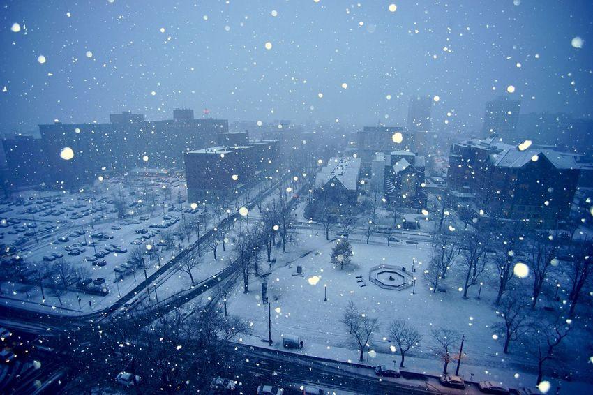 Snowy night Blue Night Snow Night Sky Street Building Outdoors Nature Cityscape