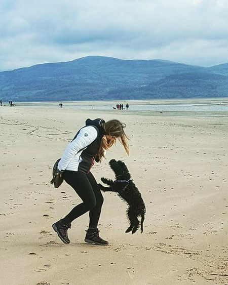 Playing On The Beach With The Cockapoo Puppy Puppy Love ❤ Cute Animals Furrbabies
