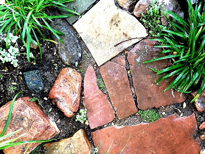 Rock - Object Day Outdoors High Angle View No People Nature Close-up Flagstones Flagstone Floor Path Pathway Rock Rock Photography Garden Photography Path In Nature