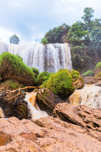 Plant Tree Solid Rock Waterfall Scenics - Nature Nature Rock - Object Beauty In Nature Water Motion Environment Flowing Water Day Land No People Forest Outdoors Non-urban Scene Flowing Falling Water Movement Cloudy Vietnam Travel Travel Destinations River