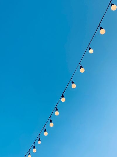 String wired bulbs on evening blue sky