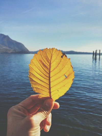 Cropped Image Of Hand Holding Leaf By Lake