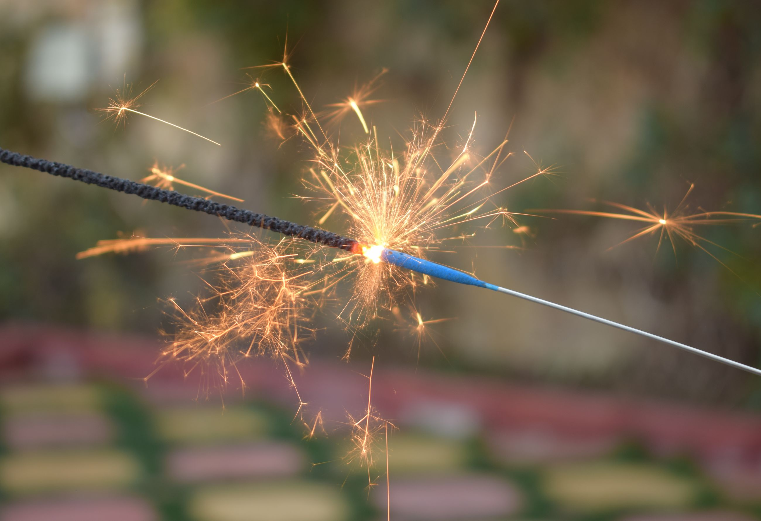 focus on foreground, celebration, illuminated, motion, blurred motion, nature, close-up, firework, arts culture and entertainment, event, long exposure, glowing, no people, outdoors, sparkler, sparks, day, selective focus, holding, plant, firework - man made object