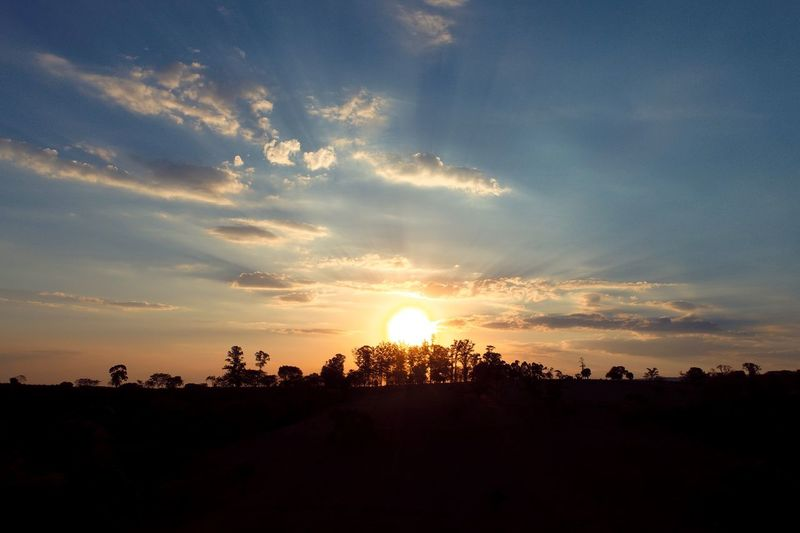 Extraordinário por do sol Drone  Rural Scene Rural Dronephotography Aerial Shot Aerial View Clouds Clouds And Sky Aerial Photography Cloud Sky And Clouds Sun Paradise Sunset Silhouette Dramatic Sky Cloud - Sky Tree Sky No People Outdoors Landscape Scenics Nature Beauty In Nature Day An Eye For Travel