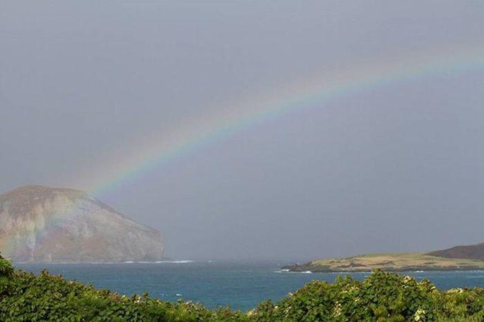 The land of many rainbows. See what rainy November days on O'ahu look like on thegoldenbullet.org 😚 Bottomofarainbow Thegoldenbullet Thegoldenbulletmag Snapshots Subscribe Oahuinnovember Waimanalo Mañana Kaohikaipu Windwardside Oahu Hawaiinei Hivibes Canon7d  Flickrfiles Rainbows Visualstorytelling Linkinbio