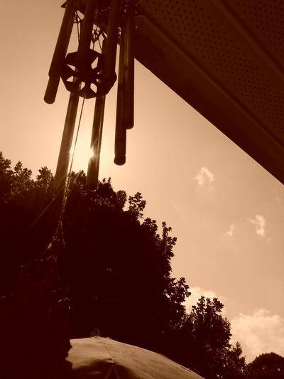 Sepia Tone Loving From Where I Sit Saturday Sun EyeEm Best Shots