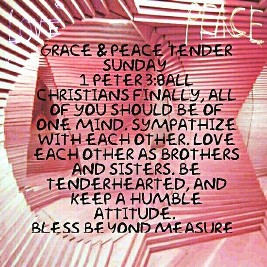 Grace & Peace Tender Sunday