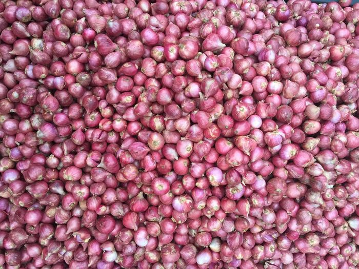 Small red onions Full Frame Backgrounds Pink Color Large Group Of Objects Abundance No People Still Life Close-up Freshness Food Food And Drink Directly Above High Angle View For Sale Repetition Indoors  Day Multi Colored Pattern Healthy Eating
