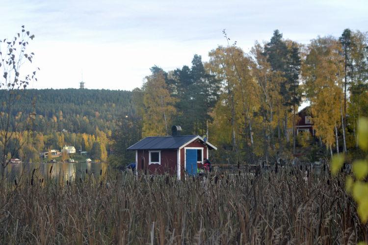 Gullnäsgården 2
