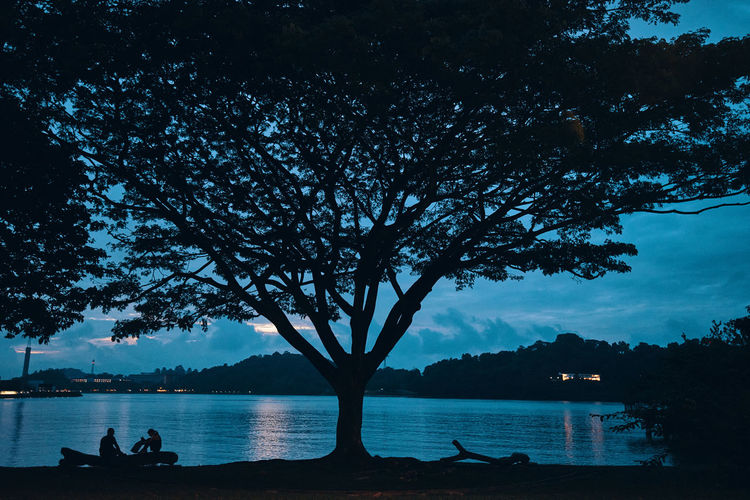Silhouette tree by lake against sky at dusk