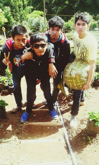 the petani