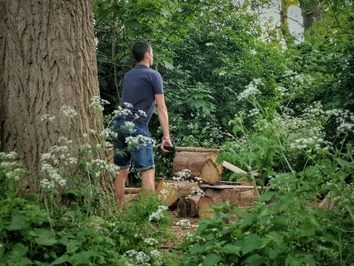 Rear view of a man looking at forest