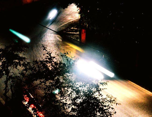 Light Trail Nightlight Trees Nightscape EyeEmNewHere First Eyeem Photo