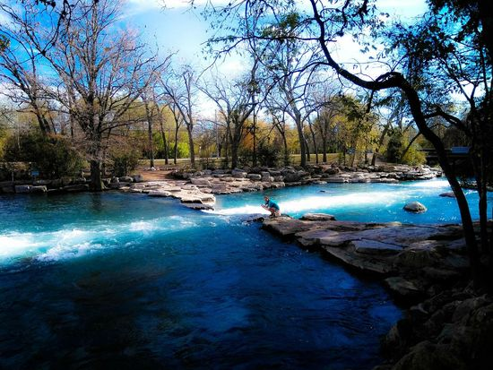 River Dam Rocks Water Tree Nature Day Beauty In Nature Outdoors Swimming Pool Blue One Person Sky