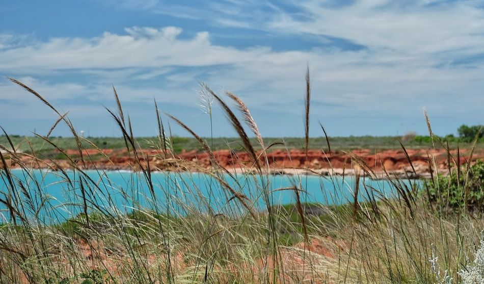 Grass Water Nature Cloud - Sky Marsh Lake Uncultivated Outdoors Sky Plant Landscape No People Day Beauty In Nature Tree Sand Dune Beach Hiking Beauty In Nature Australia Nature Australian Landscape Beach View Cliff Cliffs