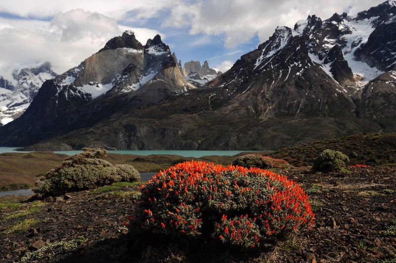 Scenic view of snowcapped mountains against sky in torres del paine